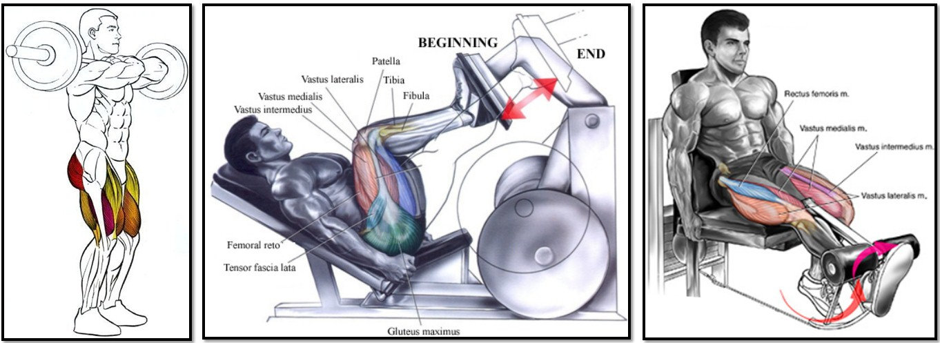 упражнения для сжигания подкожного жира на животе