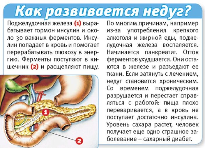 Панкреатит симптомы и лечение у взрослых отзывы