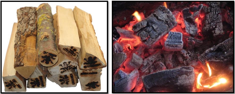 Как приготовить шашлык? Что разжигать.