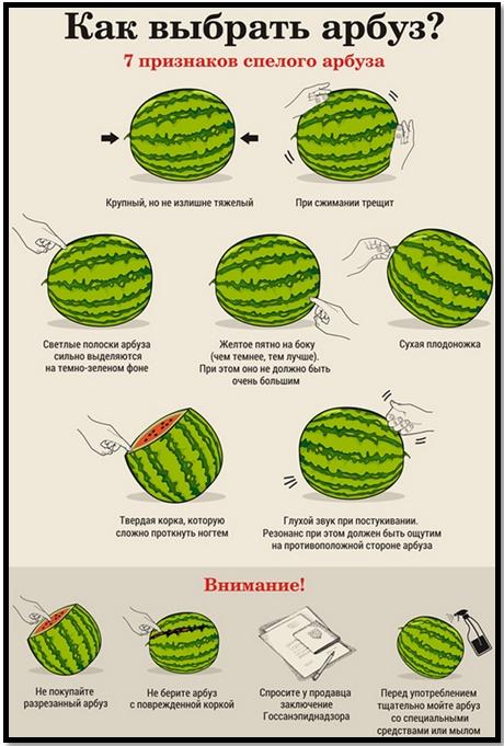 Чем полезен арбуз? Как выбрать арбуз?