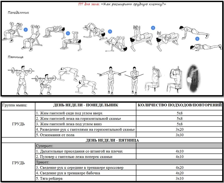 Программа тренировок для зала: как расширить грудную клетку