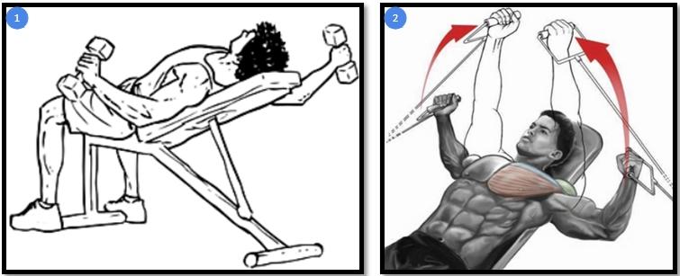 Вариации упражнения разведение гантелей лежа на наклонной скамье