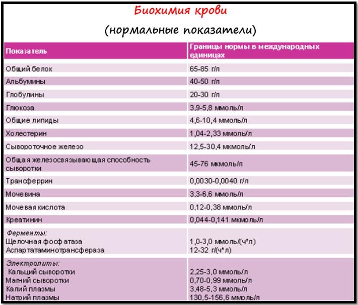Биохимический анализ крови, нормативные значения