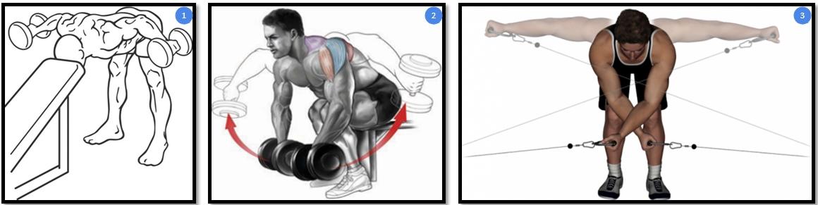 Вариации упражнения разведение гантелей в наклоне
