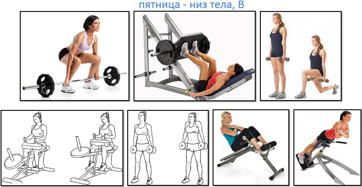 Программа тренировок для