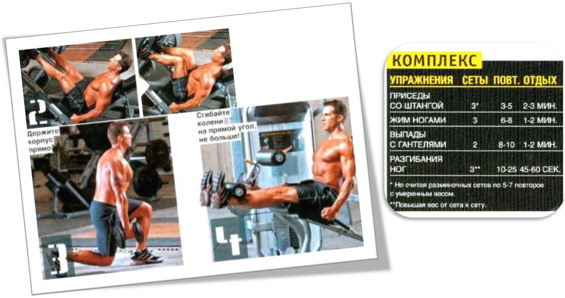 Программа тренировок ноги