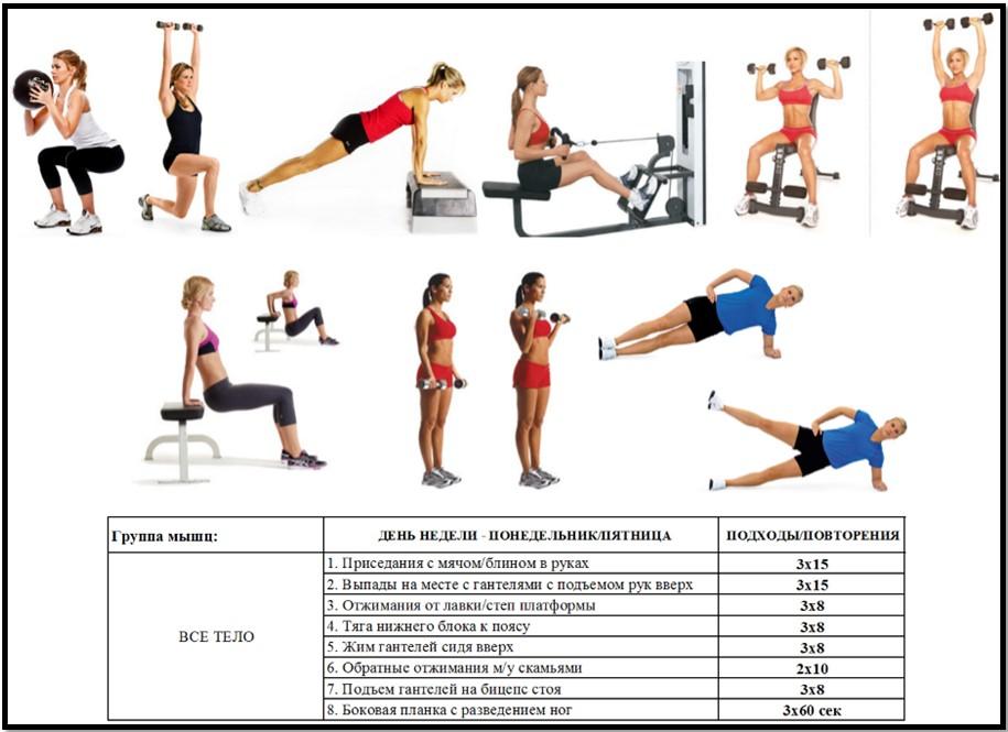 ежедневные упражнения для похудения в тренажерном зале для женщин земельный участок