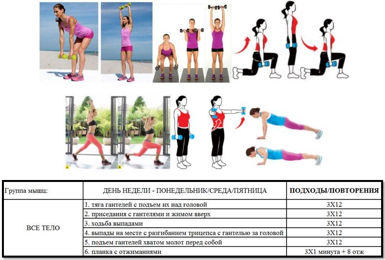 план тренировки в спортзале для похудения