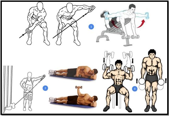 Программа тренировки плеч №1