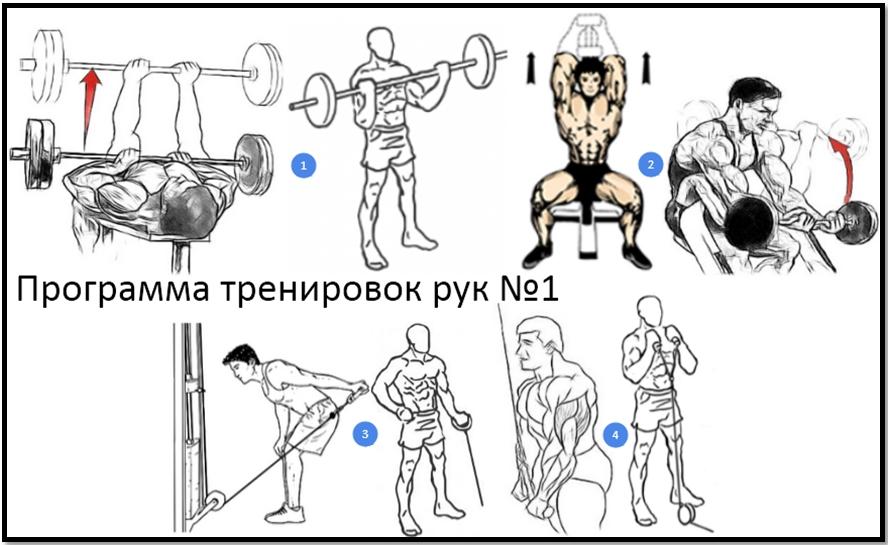 Программы тренировок своими руками