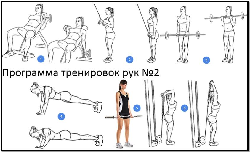 Программа для тренировки рук