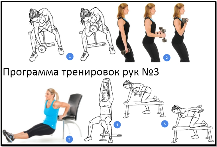 Программа тренировок рук №3 атлас упражнений