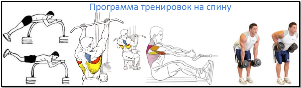Программа тренировок спины №2 атлас упражнений
