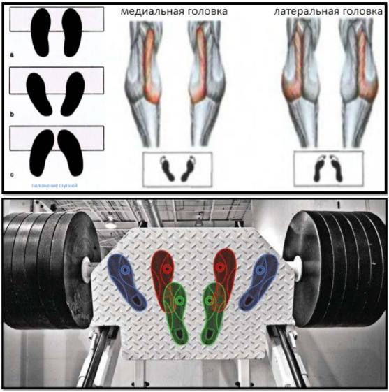 Положение ног при тренировке мышц