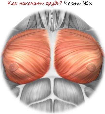 Как накачать грудь Часть 2