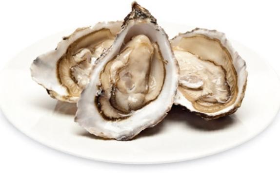 Питание для набора мышечной массы устрицы
