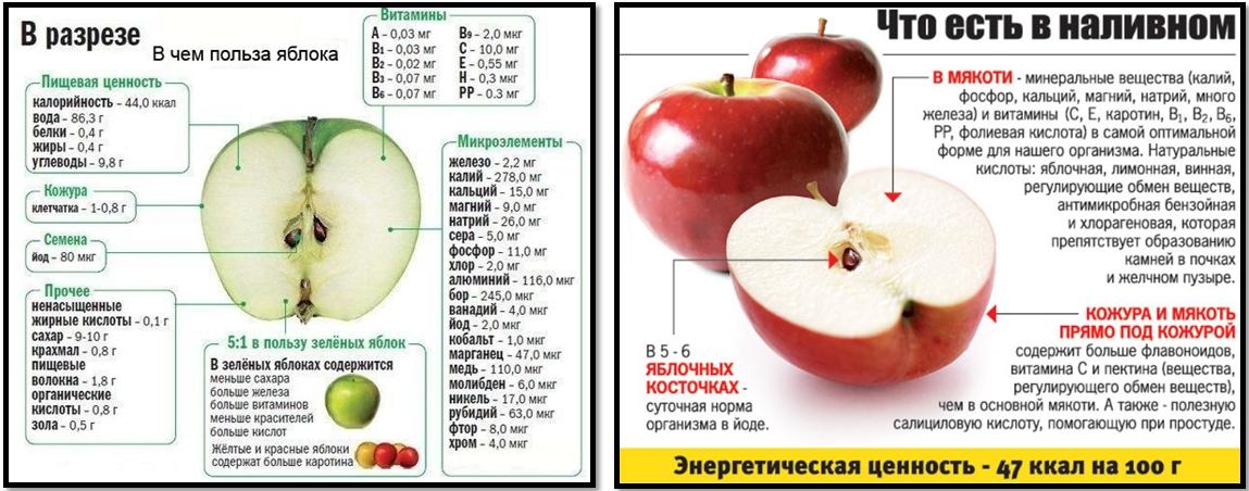 Яблочный уксус для похудения. Яблоко в разрезе.