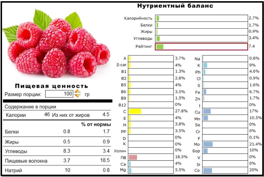 Чем полезна малина? Пищевая ценность и нутриентный баланс.