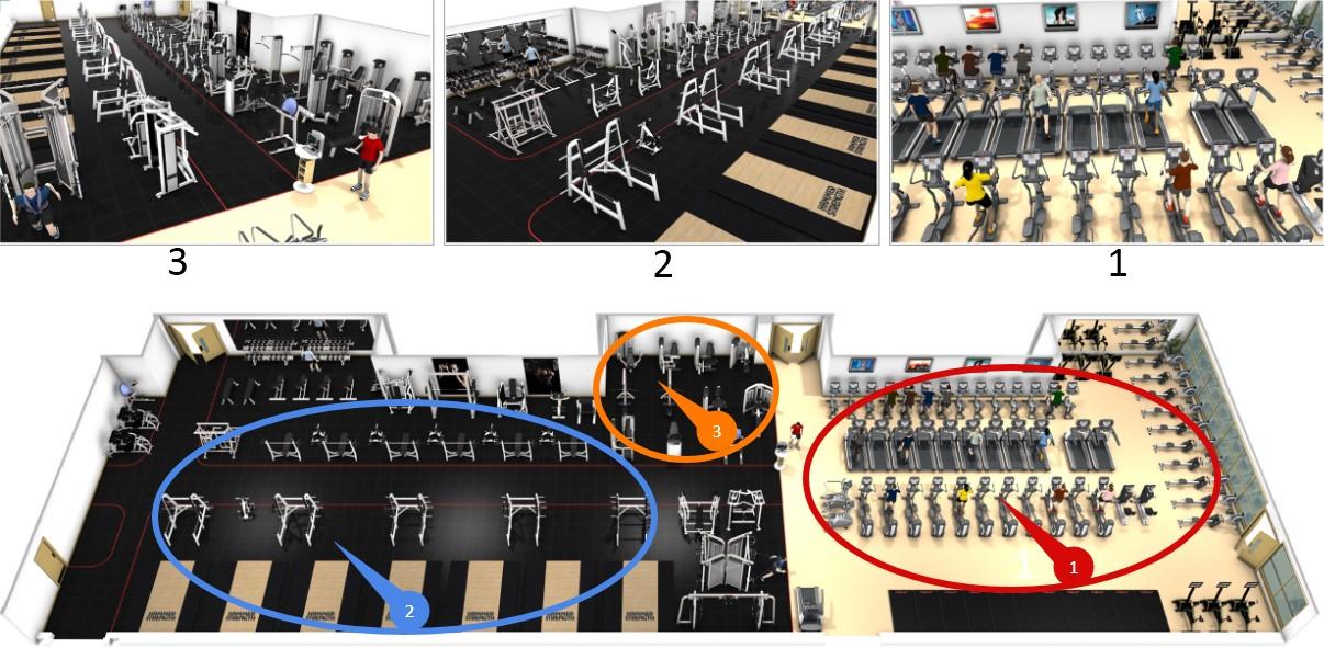 Как составить программу для тренажерного зала