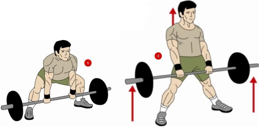 Становая тяга сумо, техника выполнения
