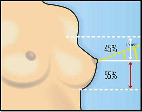 Идеальная форма груди, формула