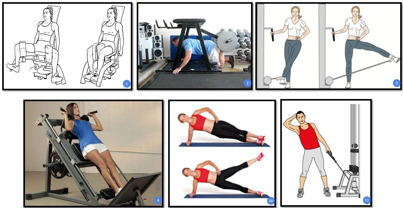 Лучшие упражнения для приводящих и отводящих мышц