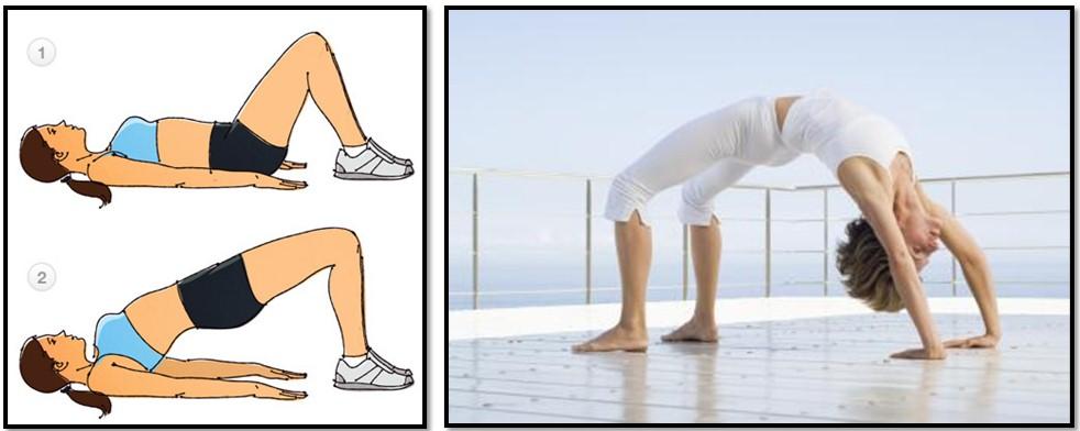упражнение ягодичный мостик
