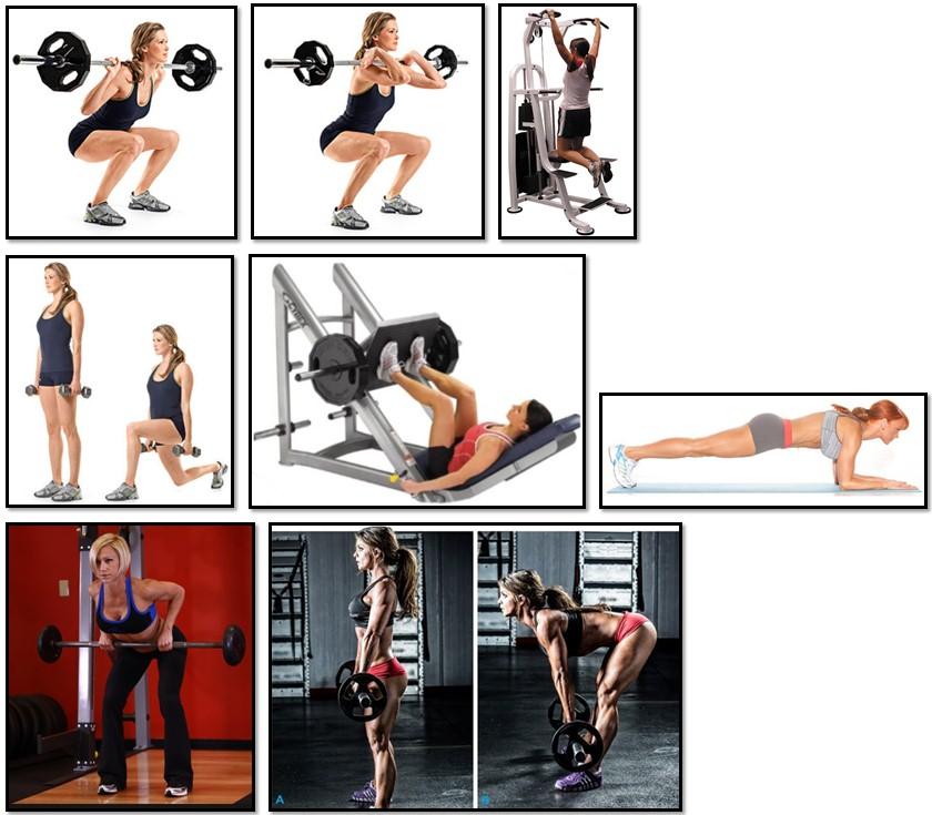 какие упражнения нужно делать девушке в тренажерном зале
