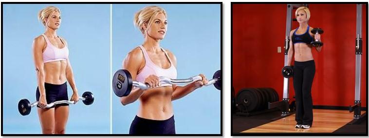 упражнения для девушки для предплечий