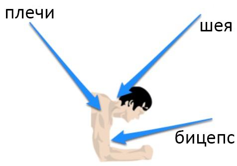 планка, верхний отдел мышц
