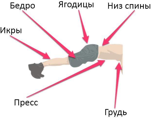 планка, нижний отдел мышц