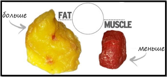 как быстро уйдет жир с живота