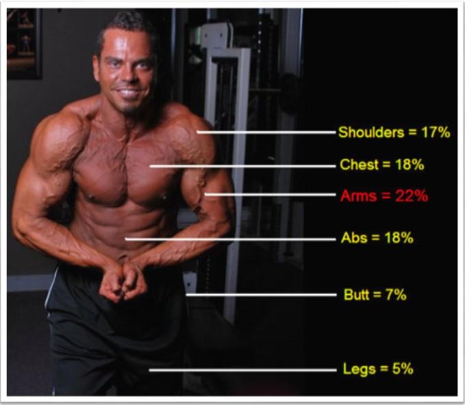 какие мышцы нравяться девушкам