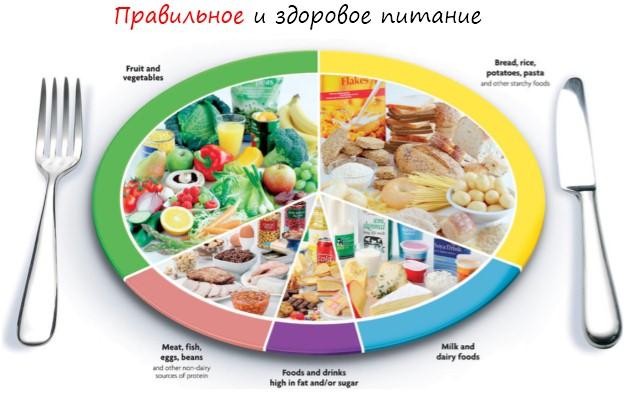 все про правильное питание